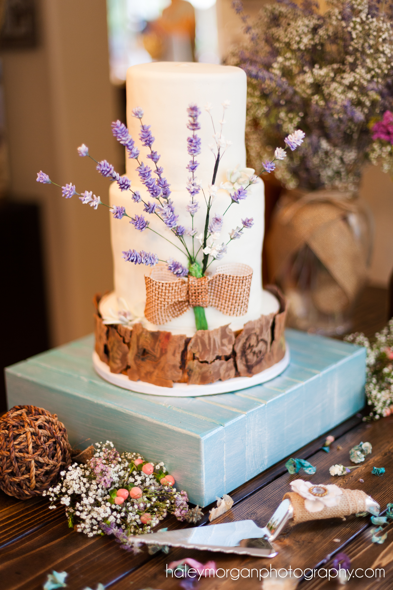 Broomfield Wedding Photographer, Broomfield Elopement Photographer, Haley Morgan Photography, Simply Sweet, The little cake llc, the little cake, kasandra raiser,