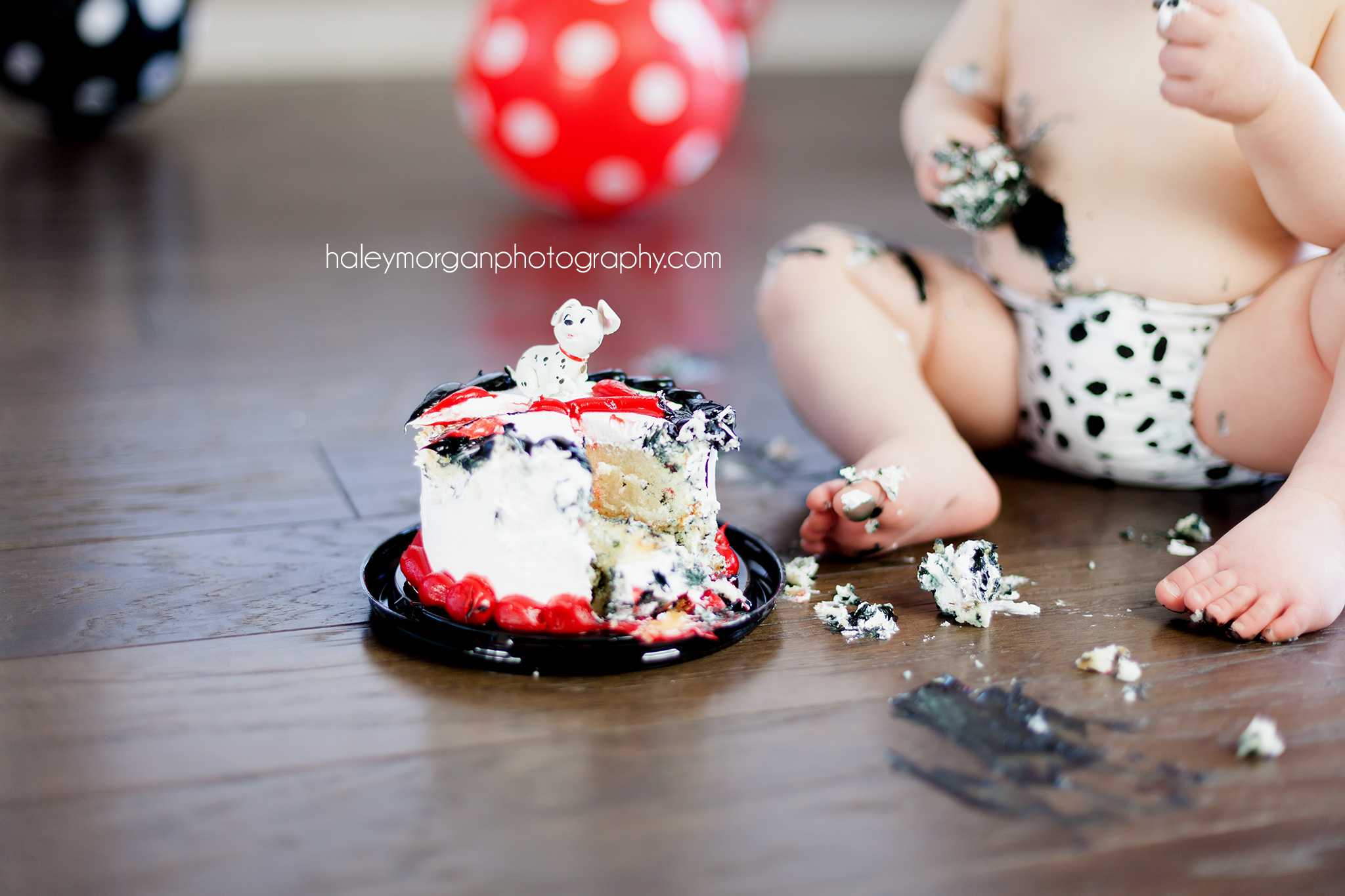 Denver Lifestyle Photographer, Denver Family Photographer, Denver Cake Smash, Cake Smash, Denver Photographer, Denver Milestone Photographer, Baby's 1st year, Denver Newborn Photographer, Haley Morgan Photography